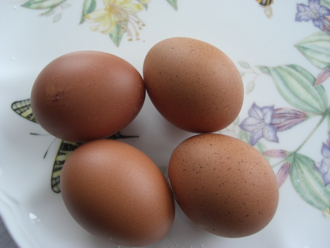 Lorelei's eggs, left, Rory's, right